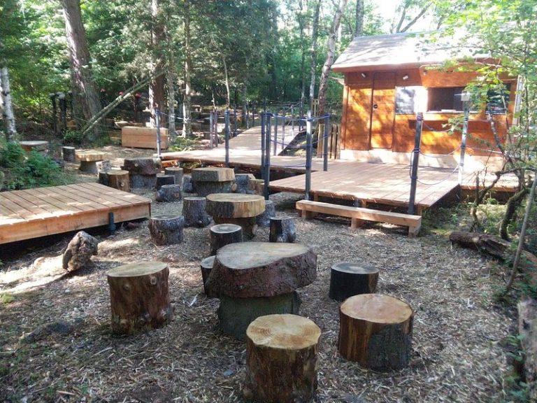 Accueil de La Forêt des Arboris